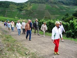 090913 Rotweinwanderweg